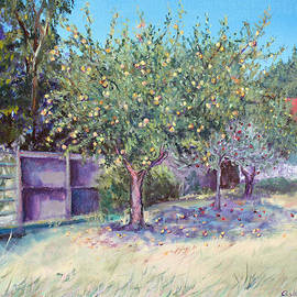 Asha Carolyn Young - October Apples