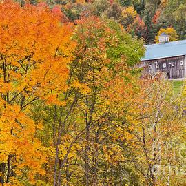 Alan L Graham - October Hillside Barn
