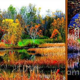 Linda Galok - October in the Berkshires