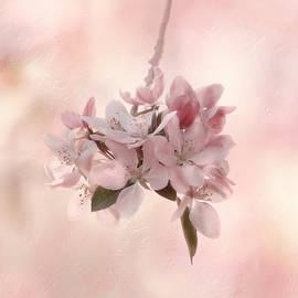 Kim Hojnacki - Ode to Spring