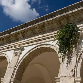 Georgia Mizuleva - Of Arches and Plants - Certosa di San Giacomo Capri Italy