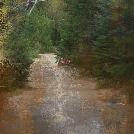 Nina Stavlund - Off the Beaten Path...