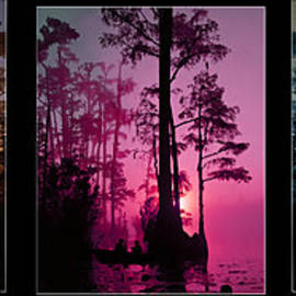 EricaMaxine  Price - Okefenokee SwampTriptych-featured in Nature Wildlife-Nature Photography-and Cards for all Occasions