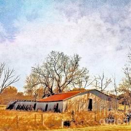 Janette Boyd - Old Barn in Autumn Light
