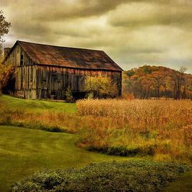 Lois Bryan - Old Barn In October