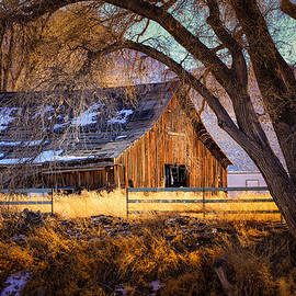 Janis Knight - Old Barn in Sparks