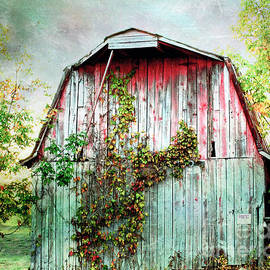 Kerri Farley - Old Barn