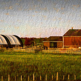 Les Palenik - Old barn