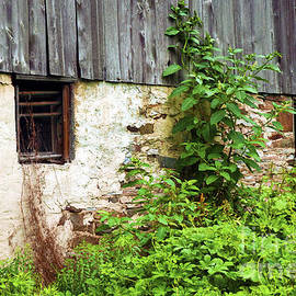 Paul W Faust -  Impressions of Light - old barn