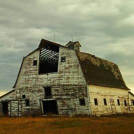 Jeff  Swan - Old barn ready to fall