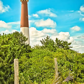 Colleen Kammerer - Old Barney -  LBI Lighthouse