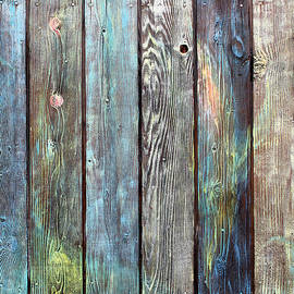 Asha Carolyn Young - Old Barnyard Gate