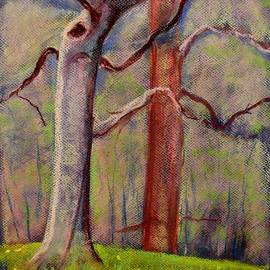 Tim  Swagerle - Old Beech Tree