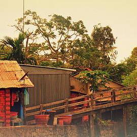 Toni Abdnour - Old Bridge on the Mekong