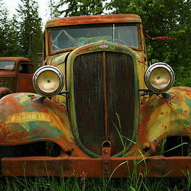Jeff  Swan - Old Cars Left To Decorate The Weeds