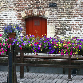 Sally Weigand - Old Dock with Flowers