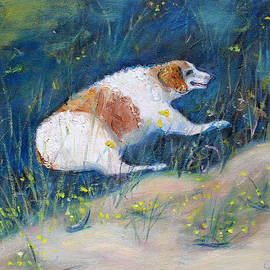 Asha Carolyn Young - Old Dog Restin in the Shade