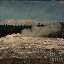 Janice Rae Pariza - Old Faithful Yellowstone Park