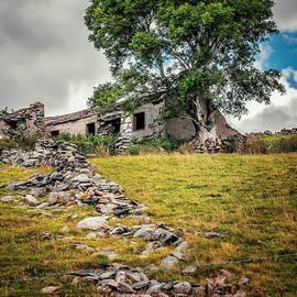 Adrian Evans - Old Farm House
