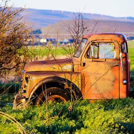 Steve G Bisig - Old Farm Truck