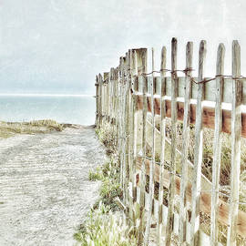 Connie Handscomb - Old Fence To The Sea