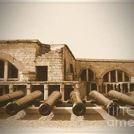 Donald Fleming - Old Fort Adams