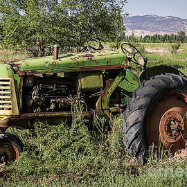 Janice Rae Pariza - Old Green Tractor