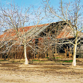 Pamela Patch - Old Orchard Barn