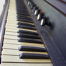 Laurie Perry - Old Organ Keyboard
