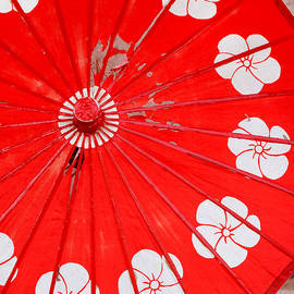 Art Block Collections - Old Red Umbrella