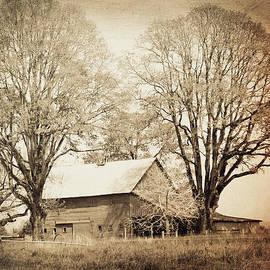 Tina Wentworth - Old Sepia Barn 2