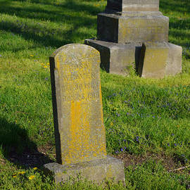 Alys Caviness-Gober - Old Stones