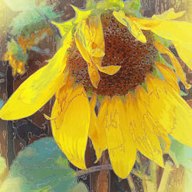Faye Cummings - Old Sunflower Bowing