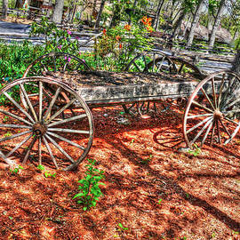John Straton - Old Wagon in The Garden