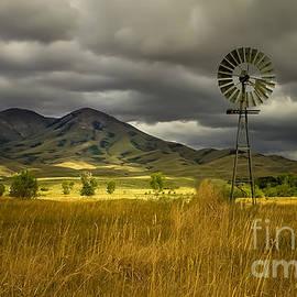 Robert Bales - Old Windmill