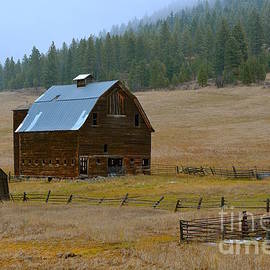 Lisa  Telquist - Old Wooden Barn with Wooden Silo