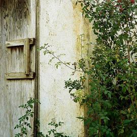 Pamela Patch - Olde Garden Wall