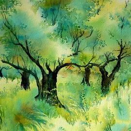 Thomas Habermann - Olive grove 6