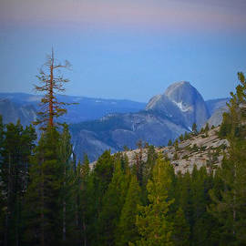 See My  Photos - Olmstead Point- Yosemite