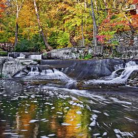 Marcia Colelli - Olmsted Falls