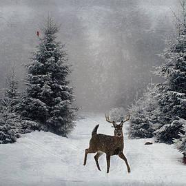 Lianne Schneider - On a snowy evening