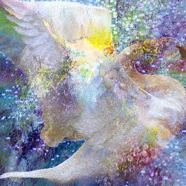 Kathy Bassett - On Swan