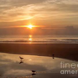 Zina Stromberg - On the beach at sunrise