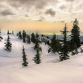 Tony Zhao - on the top of Mount Seymour