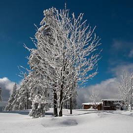 Andreas Levi - Winter on the Wurmberg, Harz