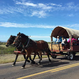 MaryAnn  Ead - Oncoming Traffic