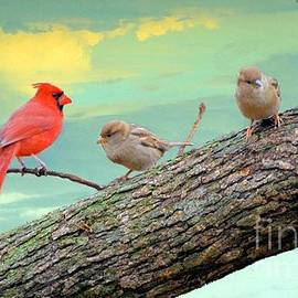 Janette Boyd - One Cardinal and Two Sparrows