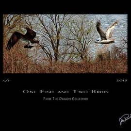 Joe Paradis - One Fish And Two Birds