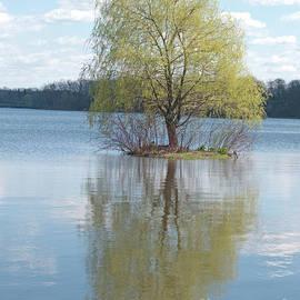 Ann Horn - One Tree Island