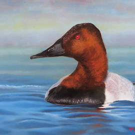 Marcus Moller - Open Water Canvasback